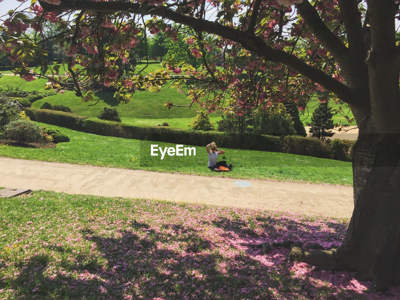 Woman Sitting On Grassy Field By Trees At Park
