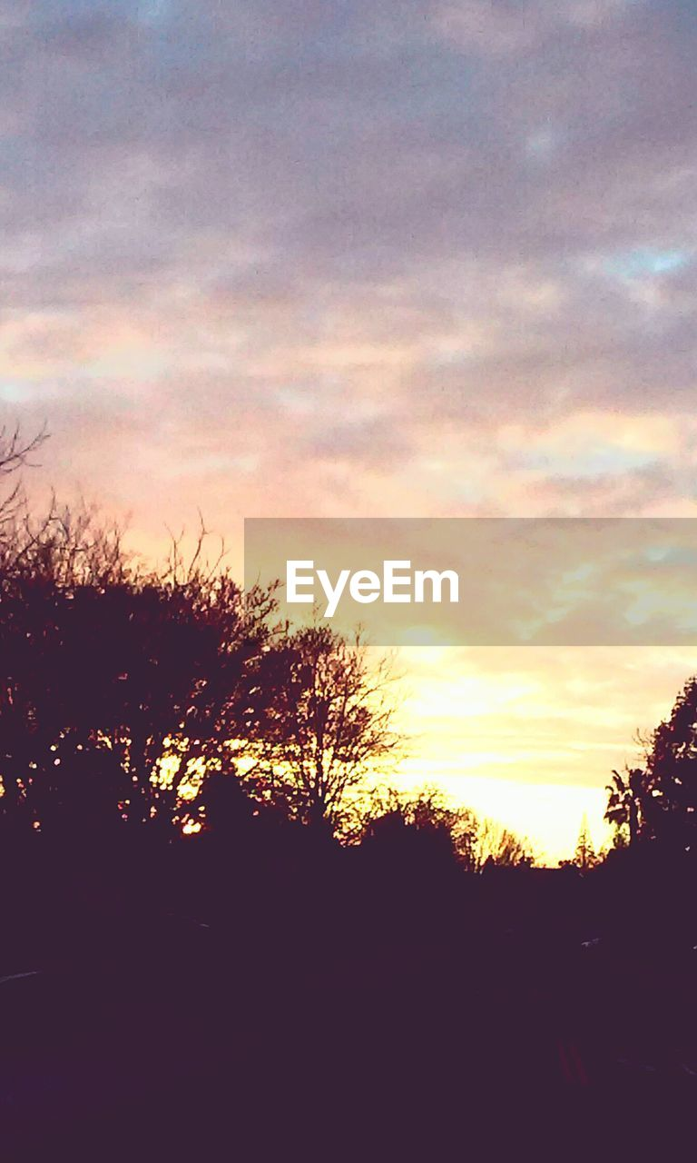 sunset, silhouette, tree, no people, tranquil scene, sky, nature, scenics, tranquility, beauty in nature, outdoors, landscape, day