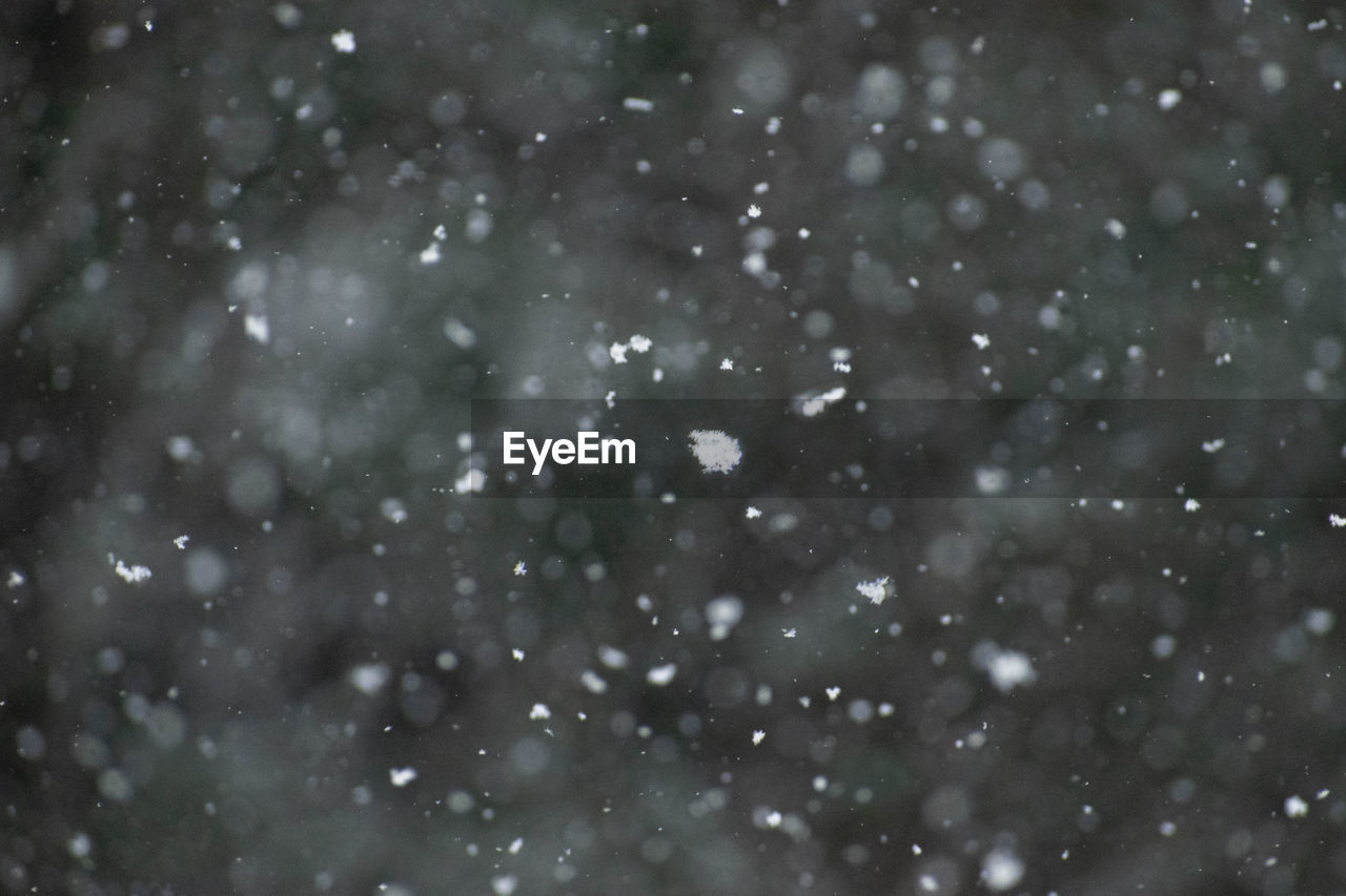 FULL FRAME SHOT OF SNOWFLAKES ON SNOW COVERED LAND