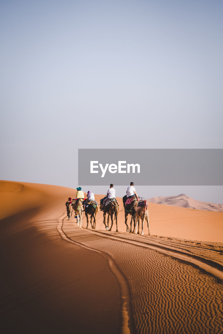 desert, mammal, sand dune, domestic animals, group of people, domestic, sky, animal themes, arid climate, ride, riding, sand, climate, animal, working animal, group of animals, pets, livestock, real people, scenics - nature