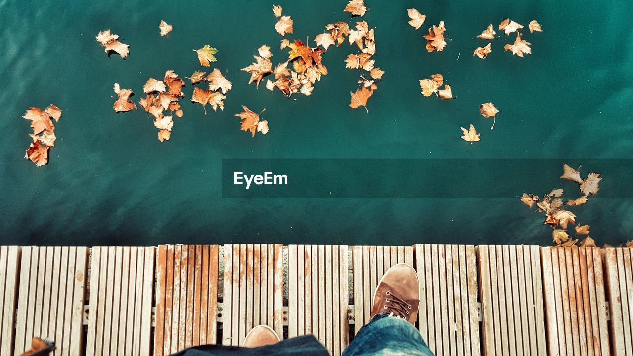 Low Section Of Man Standing On Boardwalk By Fallen Leaves Floating On Lake