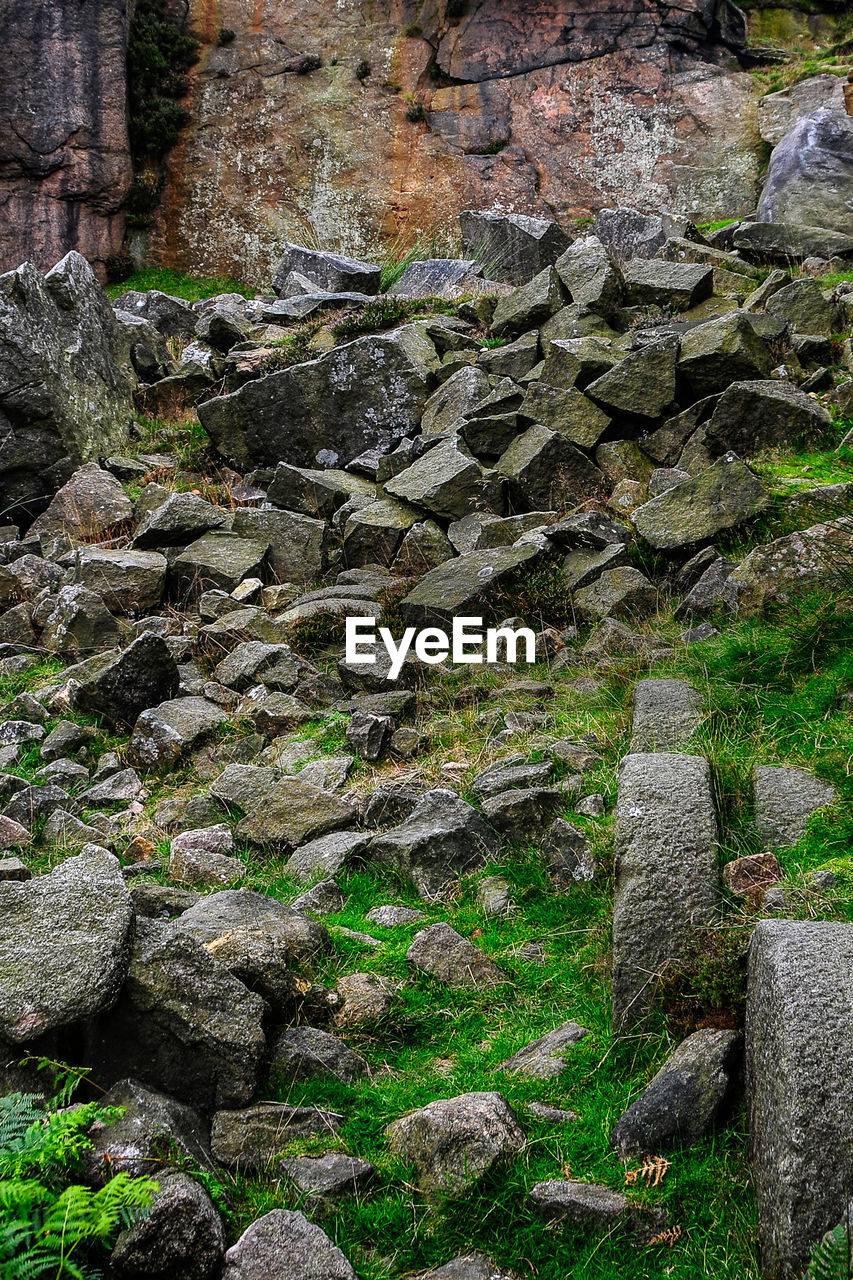 rock - object, no people, day, moss, outdoors, nature, large group of objects, grass, close-up