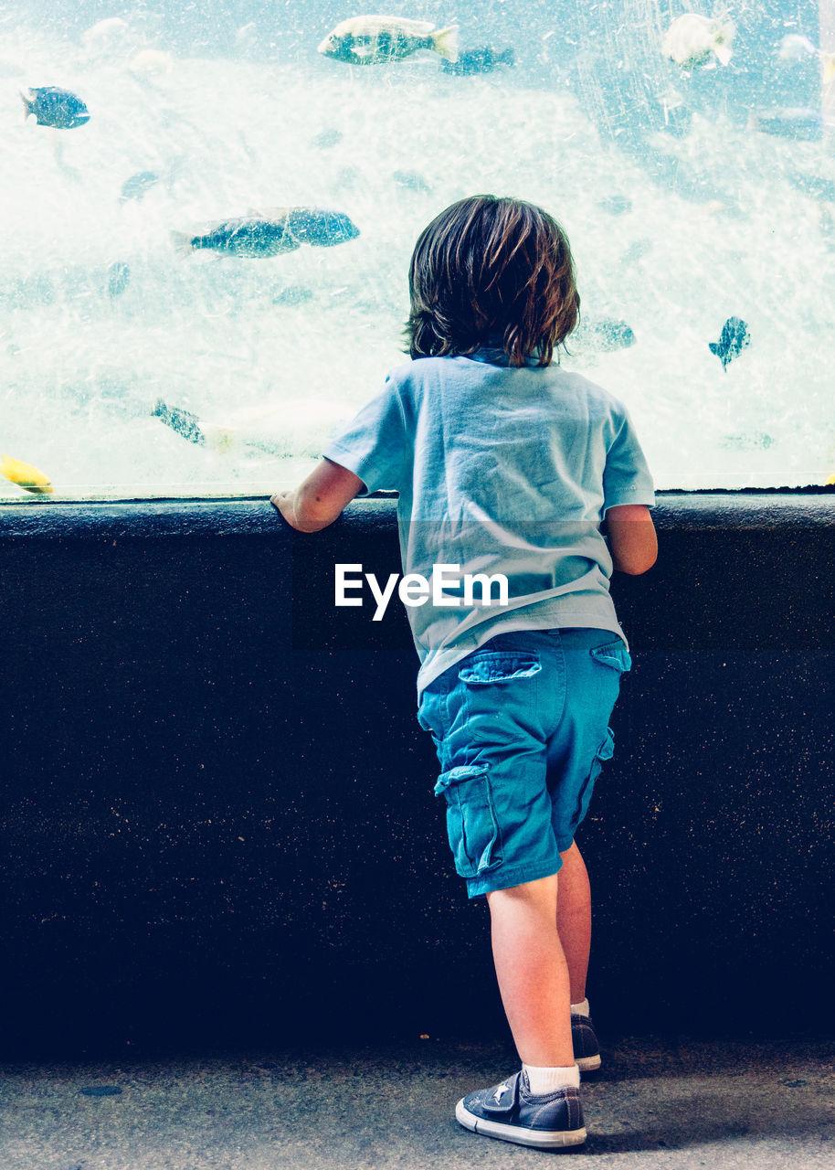 Rear View Of Boy At Aquarium