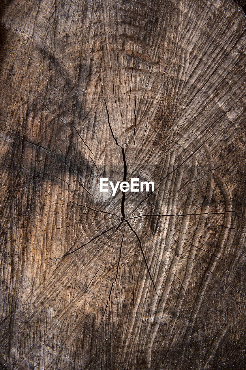 backgrounds, wood - material, tree, textured, full frame, pattern, no people, wood, brown, tree stump, cracked, wood grain, close-up, bark, natural pattern, rough, plant, nature, day, tree ring, outdoors, textured effect, concentric