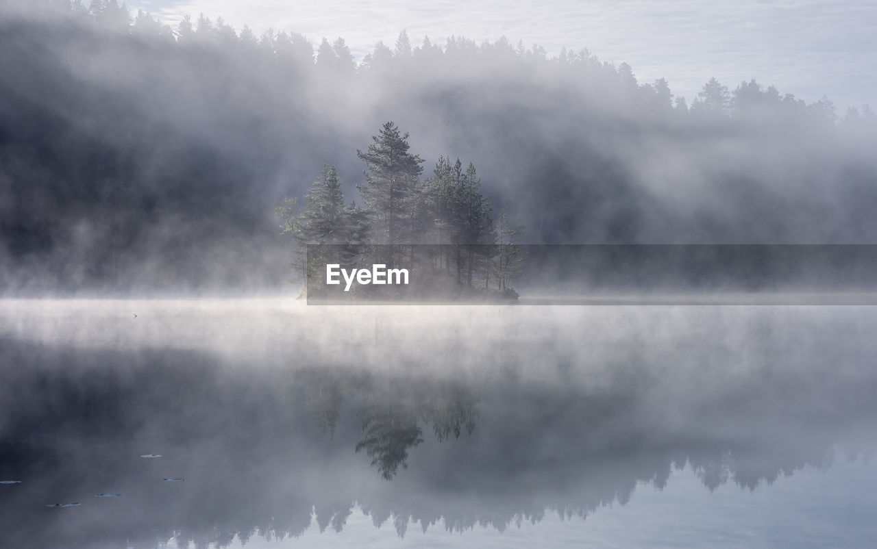 Trees By Lake Against Sky During Foggy Weather