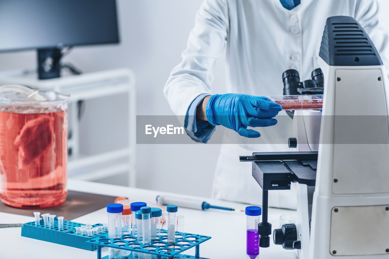 Scientist analyzing cultured artificial meat sample under the microscope in laboratory