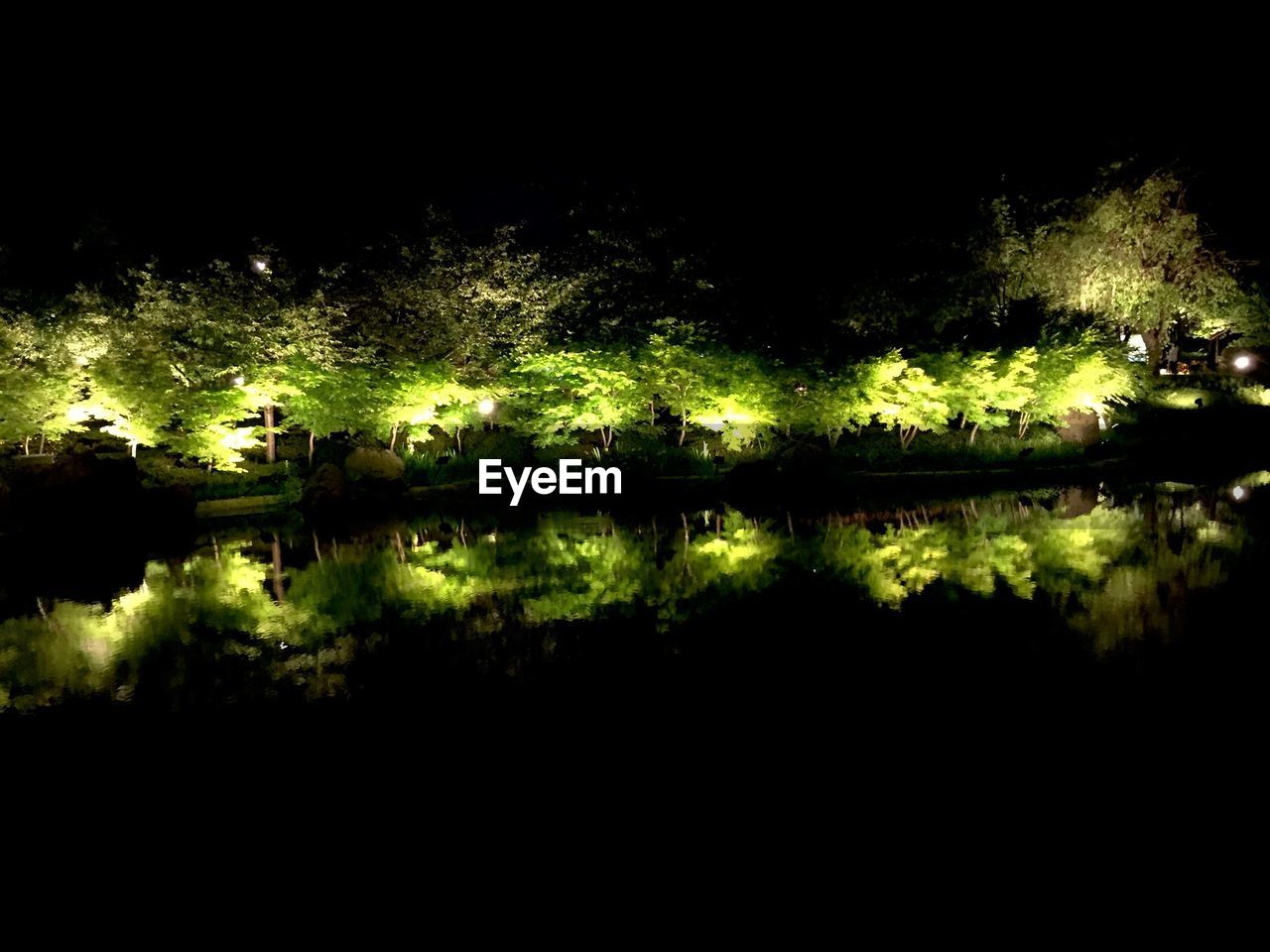 reflection, water, tree, lake, nature, no people, outdoors, beauty in nature, tranquility, growth, scenics, night, illuminated