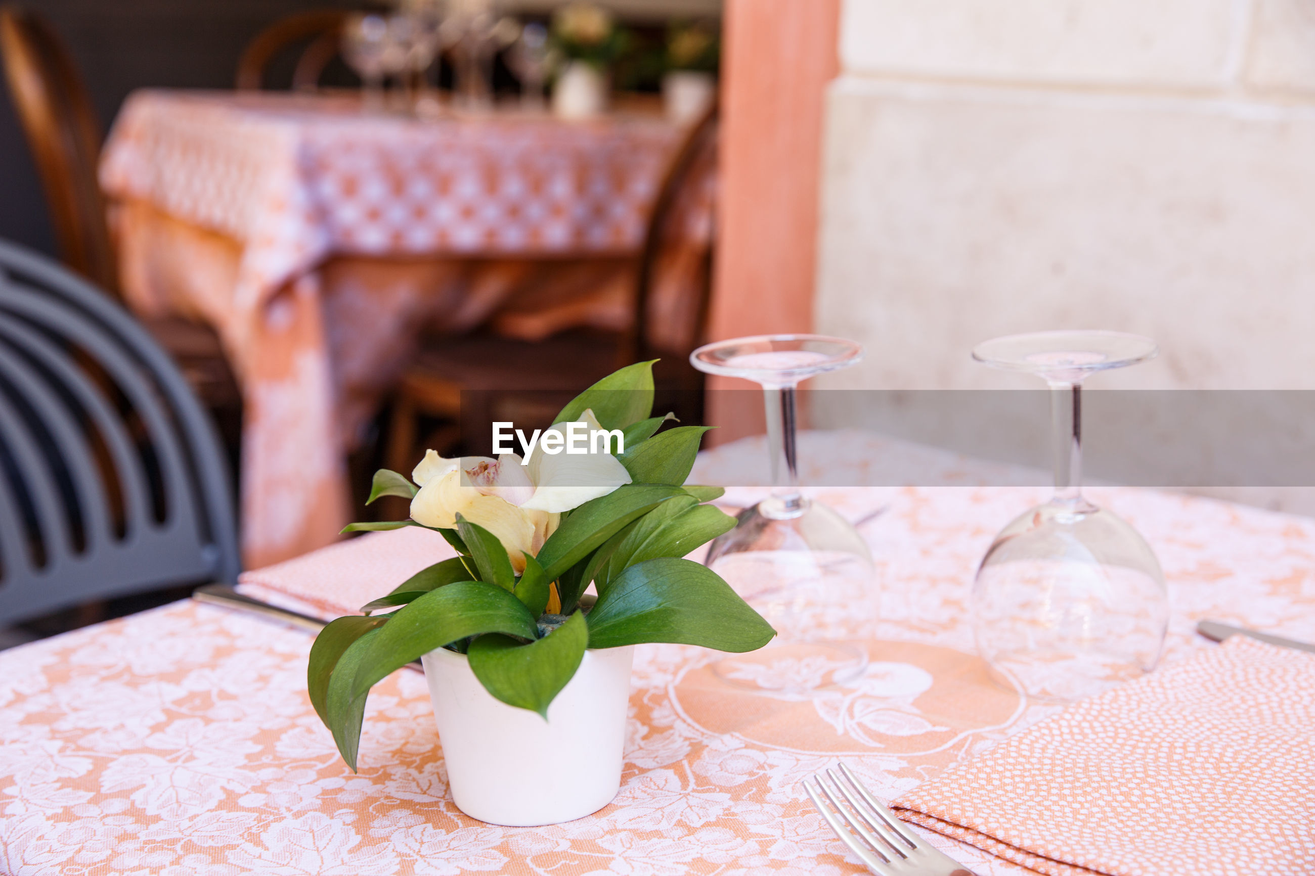 Flower pot with empty wineglasses on table at restaurant