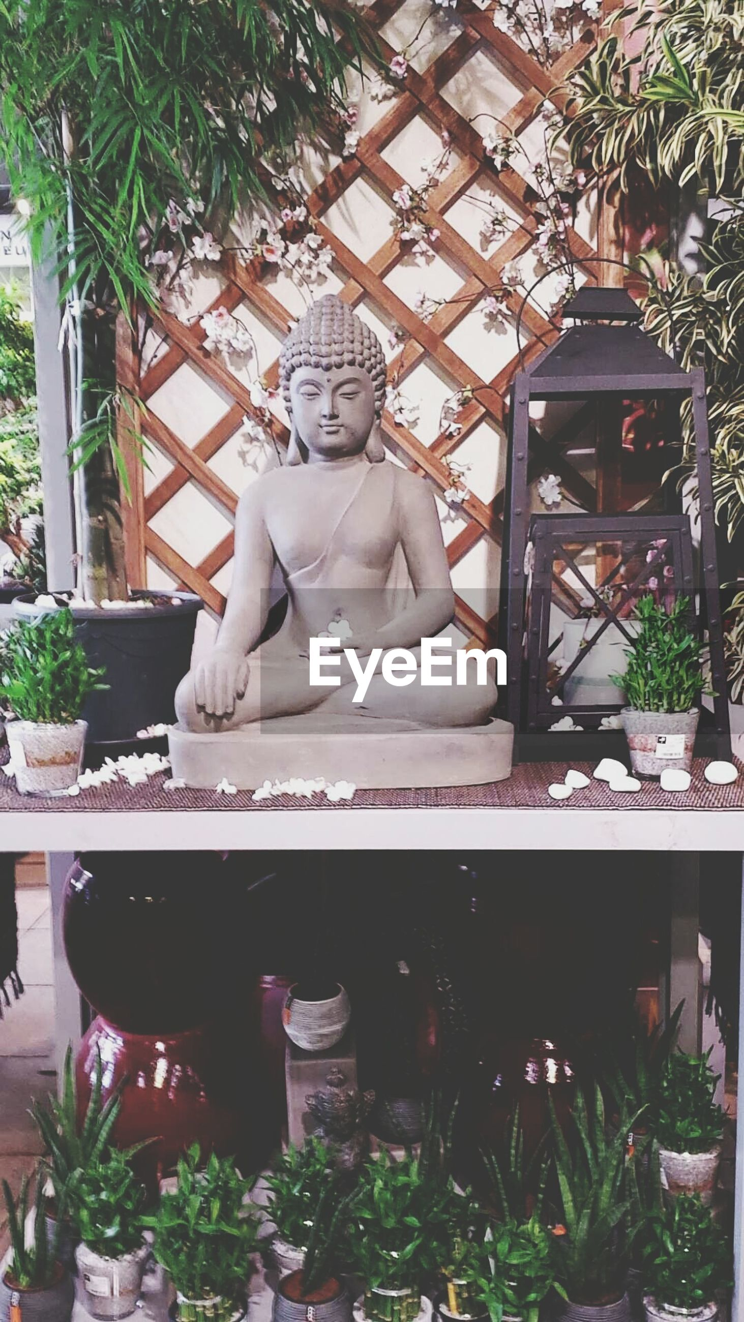 statue, sculpture, human representation, art, art and craft, creativity, buddha, plant, religion, spirituality, built structure, day, carving - craft product, architecture, tree, no people, craft