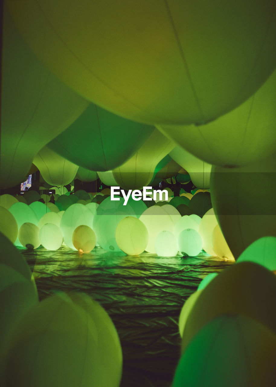 green color, no people, nature, plant, night, illuminated, balloon, multi colored, glowing, water, full frame, outdoors, close-up, selective focus, pattern, sphere, beauty in nature, backgrounds, lighting equipment