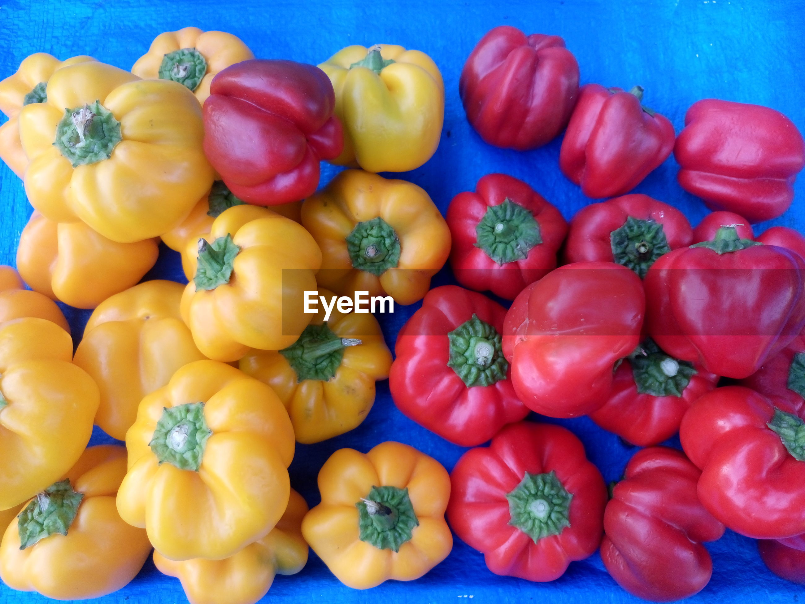 vegetable, food and drink, food, healthy eating, variation, red bell pepper, still life, freshness, retail, high angle view, bell pepper, no people, large group of objects, for sale, yellow bell pepper, raw food, red, abundance, market, yellow, stack, choice, multi colored, day, close-up, indoors