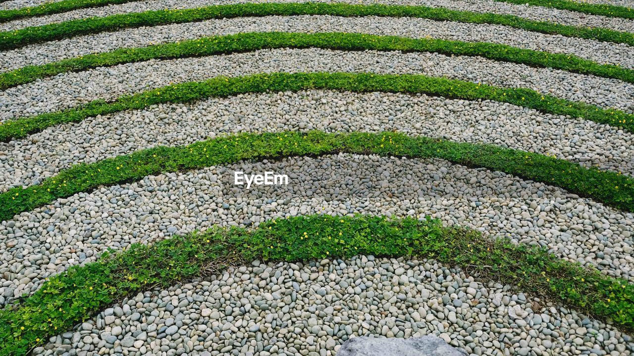 full frame, backgrounds, no people, green color, nature, plant, pattern, day, high angle view, grass, outdoors, garden, formal garden, solid, ornamental garden, architecture, rock, garden path, close-up, gravel, hedge, pebble