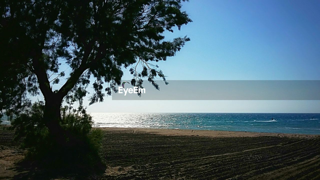 sea, horizon over water, beach, water, tree, scenics, nature, tranquil scene, tranquility, beauty in nature, clear sky, blue, no people, outdoors, sky, day