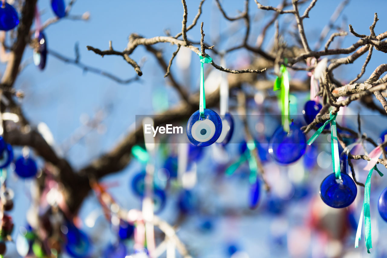 focus on foreground, hanging, close-up, blue, day, no people, selective focus, nature, outdoors, plant, tree, branch, decoration, growth, food and drink, luck, sunlight, beauty in nature, twig, eye