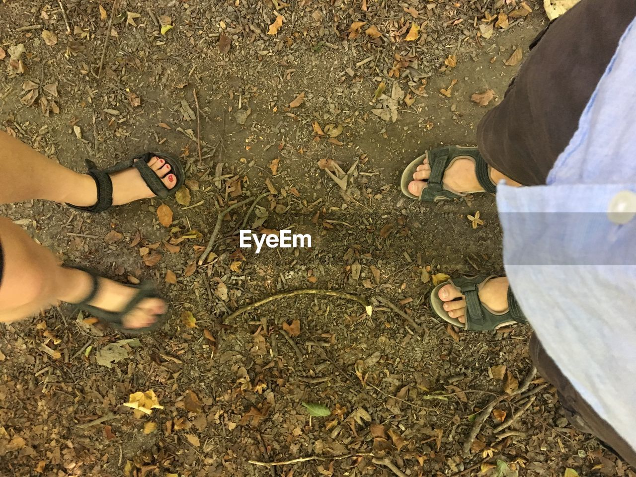 low section, real people, human leg, high angle view, land, human body part, shoe, standing, body part, day, men, lifestyles, women, bonding, leisure activity, togetherness, nature, adult, people, friendship, outdoors, human foot, positive emotion