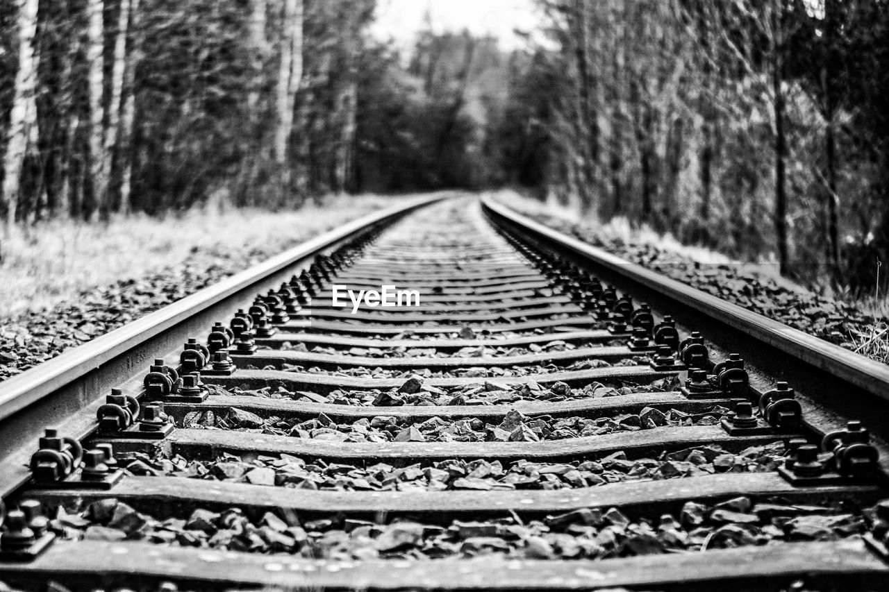 railroad track, transportation, rail transportation, the way forward, diminishing perspective, railroad tie, metal, day, surface level, tree, no people, straight, outdoors, public transportation, nature