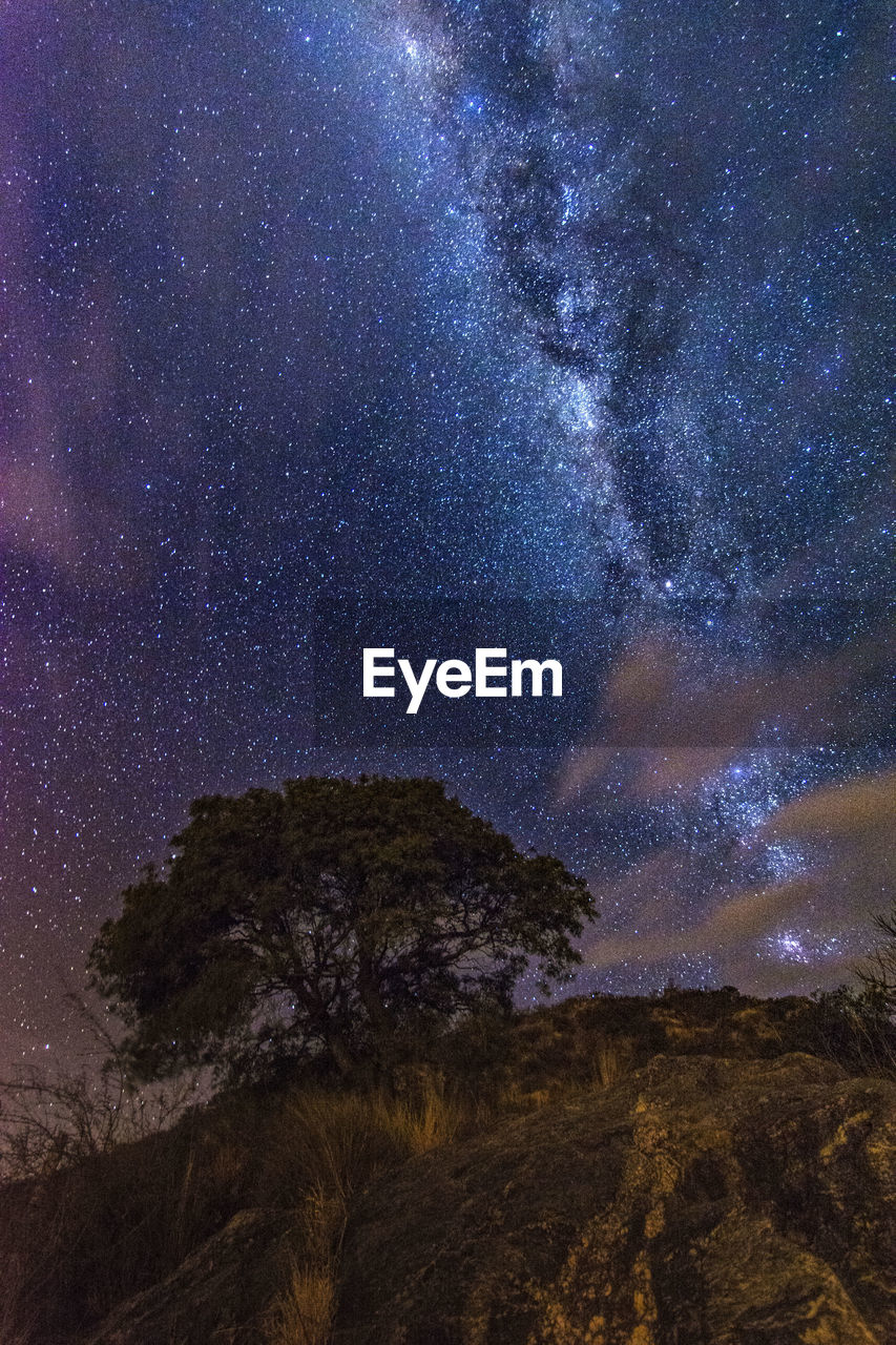 star - space, night, astronomy, galaxy, milky way, sky, mountain, no people, nature, scenics, tranquility, landscape, beauty in nature, space, outdoors, constellation, space exploration, starry, tree