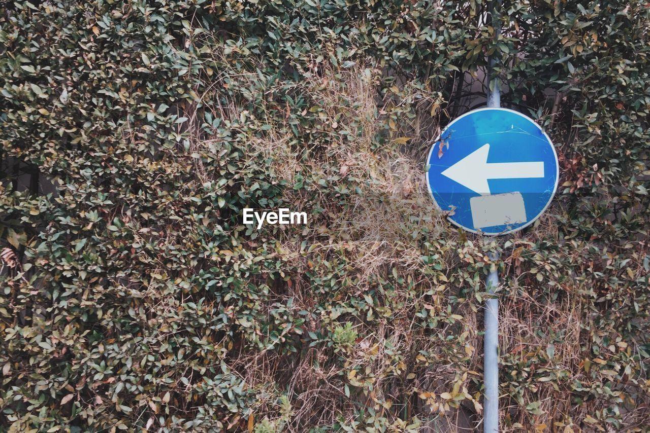 Arrow Symbol Against Trees