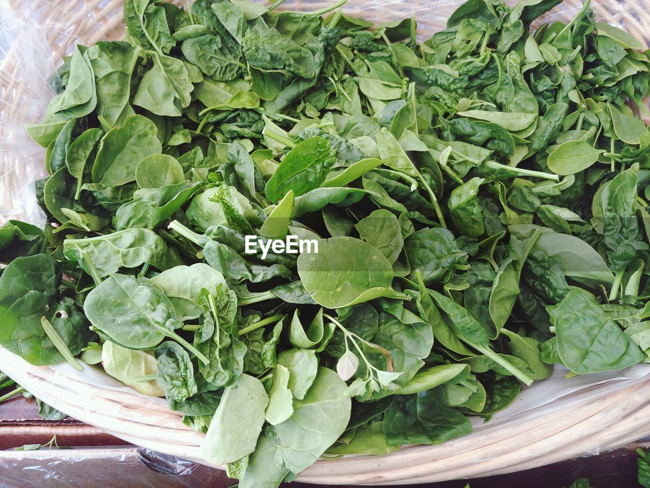 food and drink, healthy eating, food, green color, vegetable, wellbeing, freshness, leaf vegetable, close-up, no people, plant part, raw food, leaf, still life, green, lettuce, indoors, day, high angle view, spinach, leaves, vegetarian food, arugula
