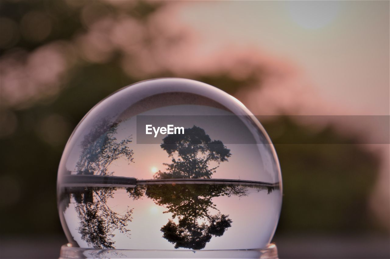 reflection, sphere, close-up, focus on foreground, glass - material, tree, nature, transparent, crystal ball, plant, upside down, outdoors, no people, day, geometric shape, shape, circle, sky, ball, beauty in nature
