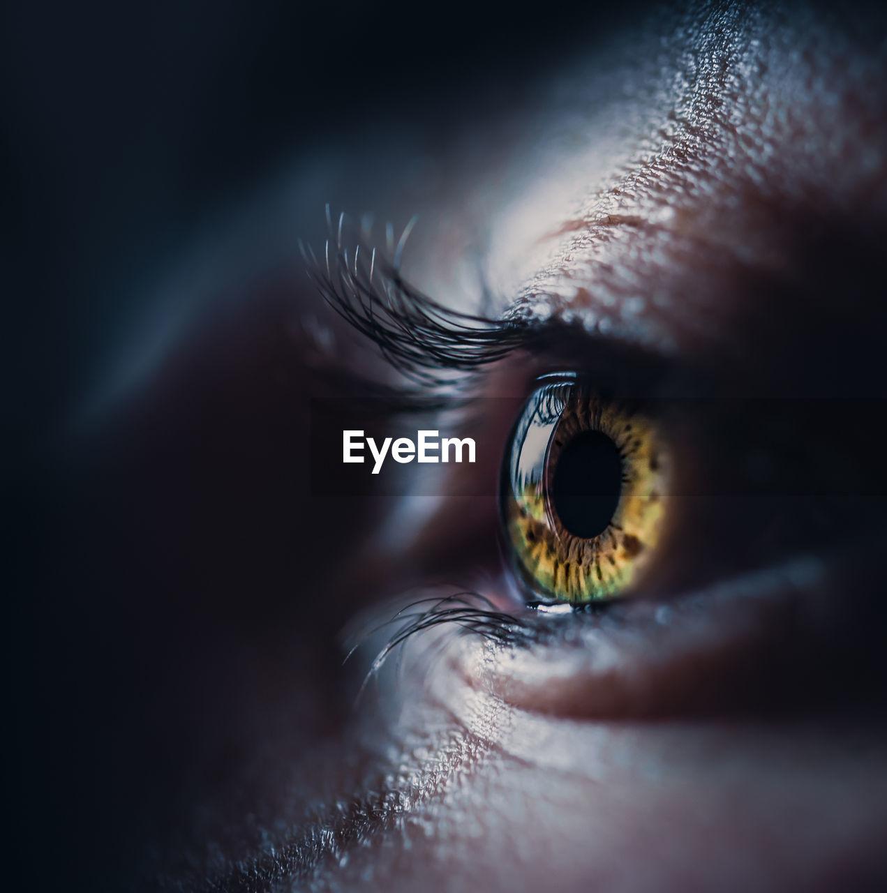 Close-up of human eye looking away