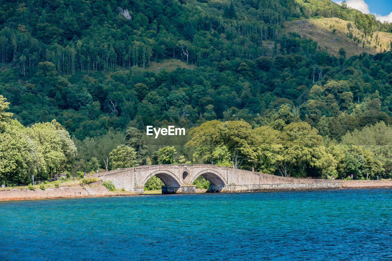 water, tree, plant, architecture, built structure, scenics - nature, bridge, nature, bridge - man made structure, arch, connection, no people, green color, forest, river, growth, day, transportation, outdoors, arch bridge, flowing water