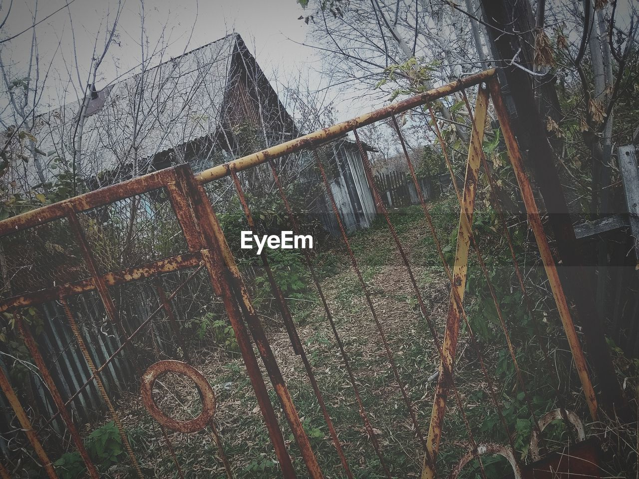 plant, tree, land, abandoned, no people, architecture, obsolete, nature, damaged, forest, old, day, built structure, rusty, deterioration, decline, run-down, tranquility, metal, barrier, outdoors, wheel