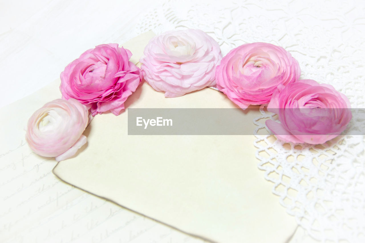 pink color, flower, beauty in nature, flowering plant, freshness, close-up, indoors, high angle view, no people, still life, plant, rose, rose - flower, vulnerability, nature, petal, fragility, table, inflorescence, flower head, personal accessory, floral pattern, flower arrangement