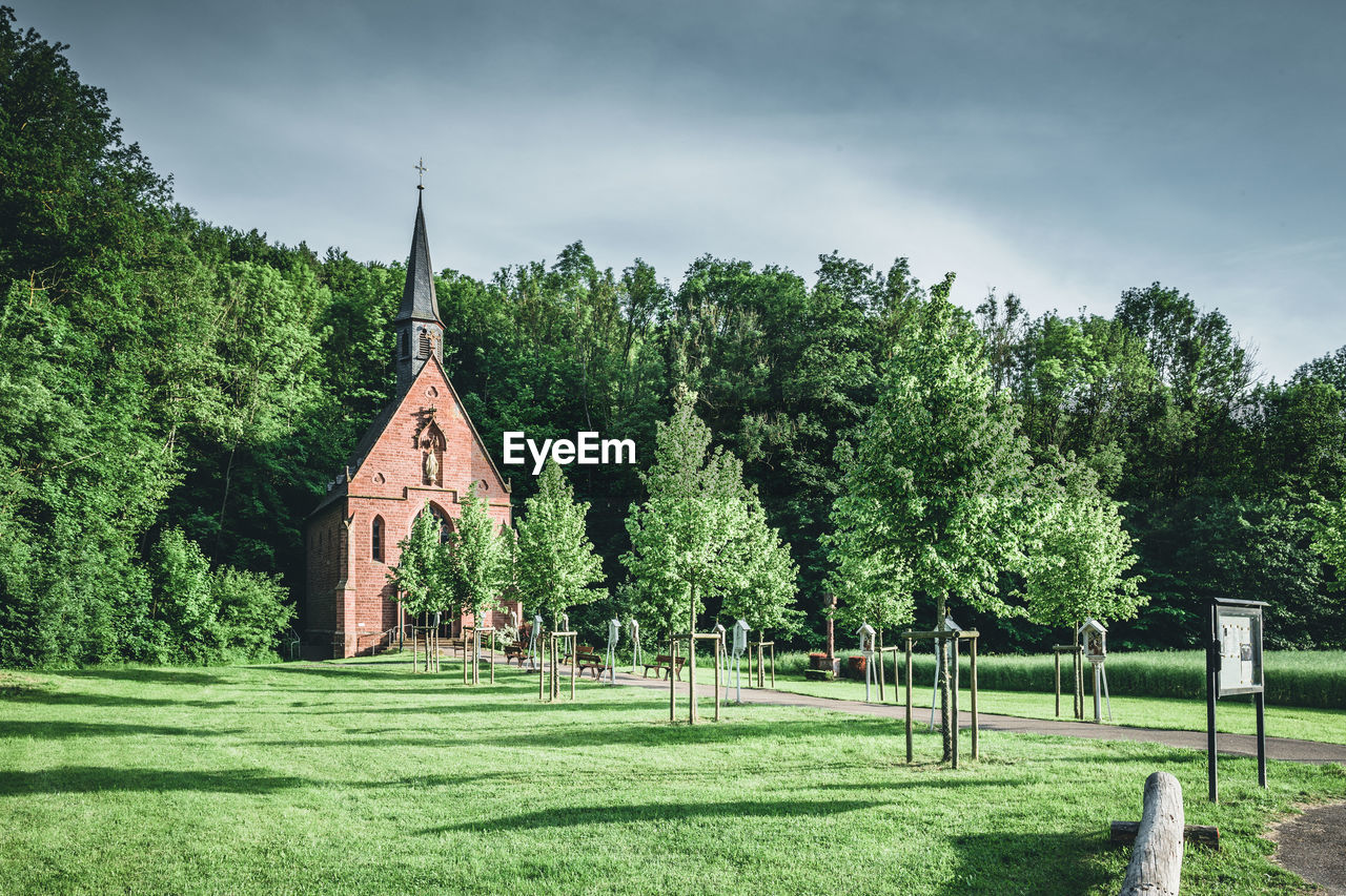 tree, plant, green color, grass, religion, architecture, nature, sky, place of worship, spirituality, built structure, day, no people, building exterior, growth, land, belief, building, outdoors, spire