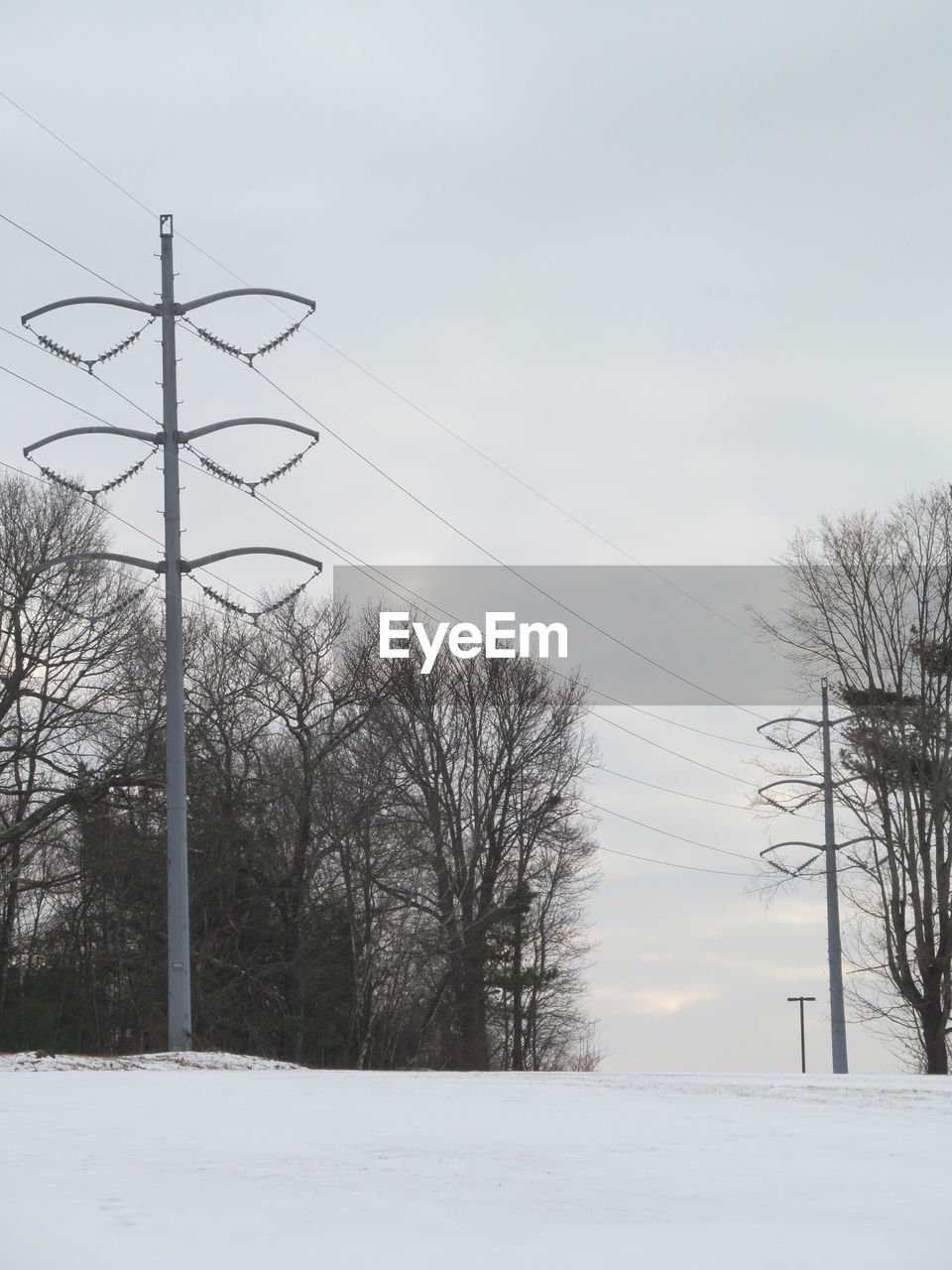 snow, winter, cold temperature, tree, sky, cable, bare tree, electricity pylon, electricity, nature, plant, technology, power line, power supply, field, beauty in nature, no people, connection, scenics - nature, outdoors, snowing