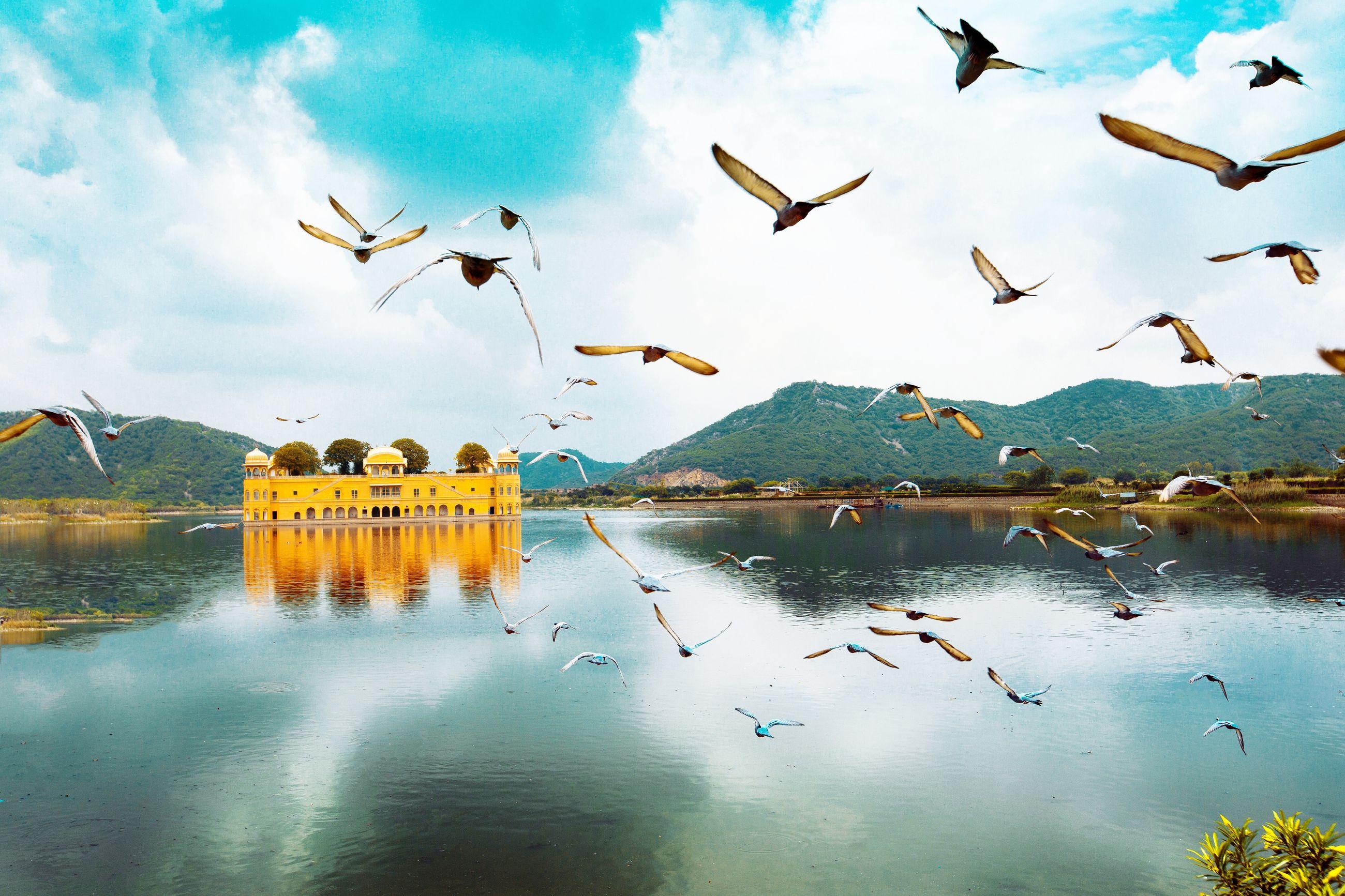Flock of birds flying over lake against sky