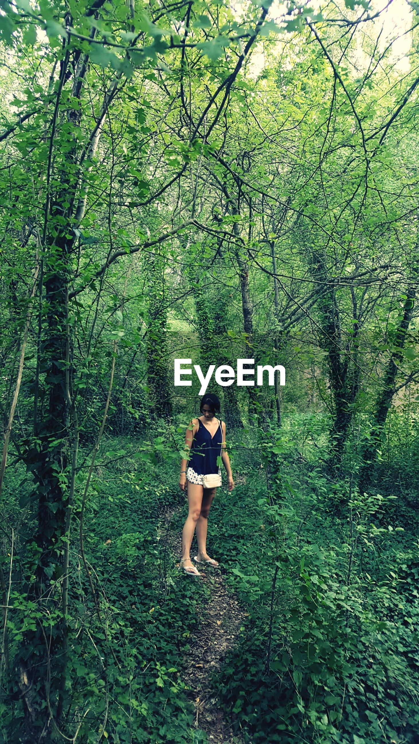 forest, tree, green color, full length, growth, one person, nature, real people, leisure activity, hiking, adventure, lifestyles, day, walking, healthy lifestyle, outdoors, standing, boys, branch, beauty in nature, young adult, young women, people
