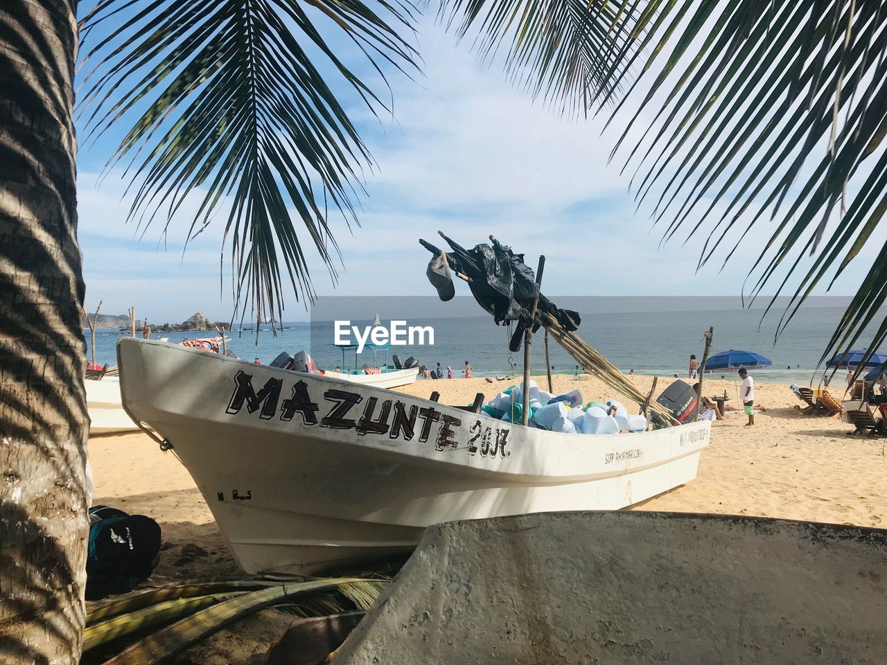 sea, water, nautical vessel, palm tree, mode of transportation, beach, transportation, sky, tree, tropical climate, nature, land, moored, day, plant, sand, incidental people, horizon over water, outdoors