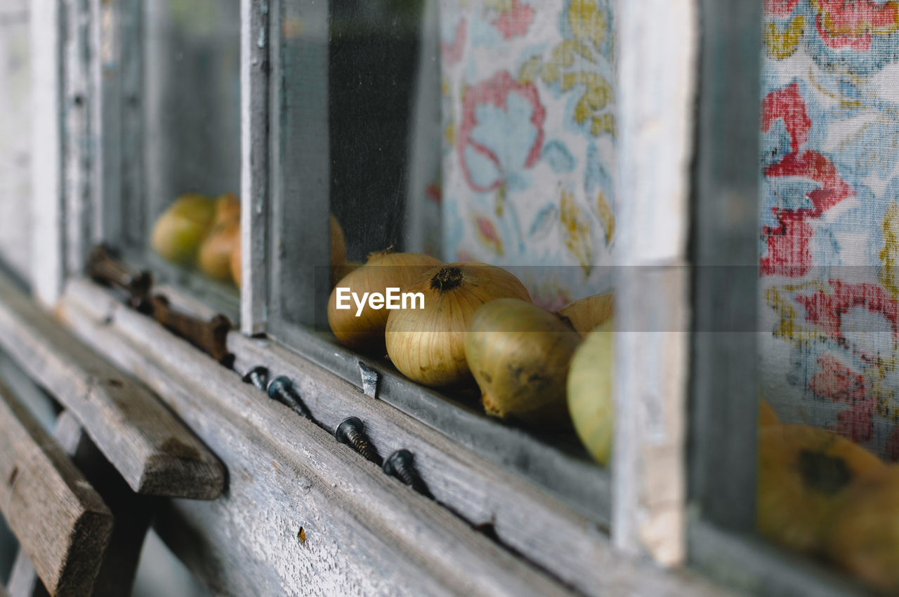 Onions on window