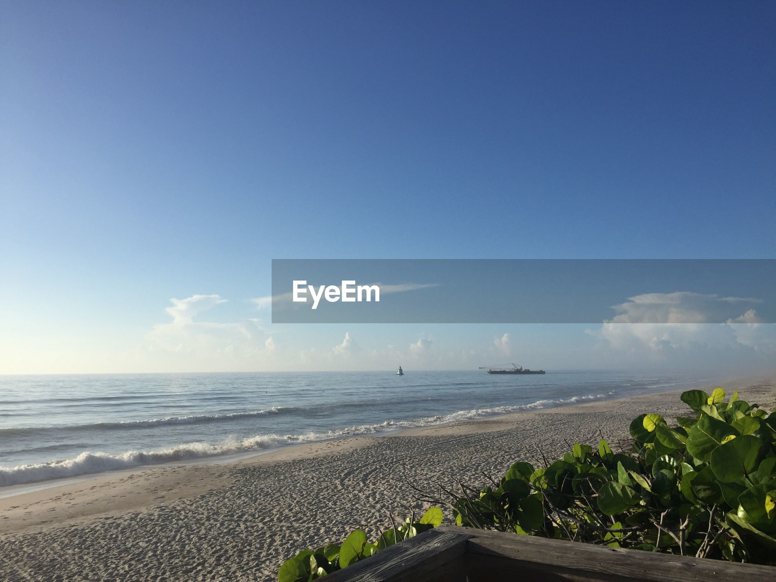Scenic view of beach against blue sky on sunny day