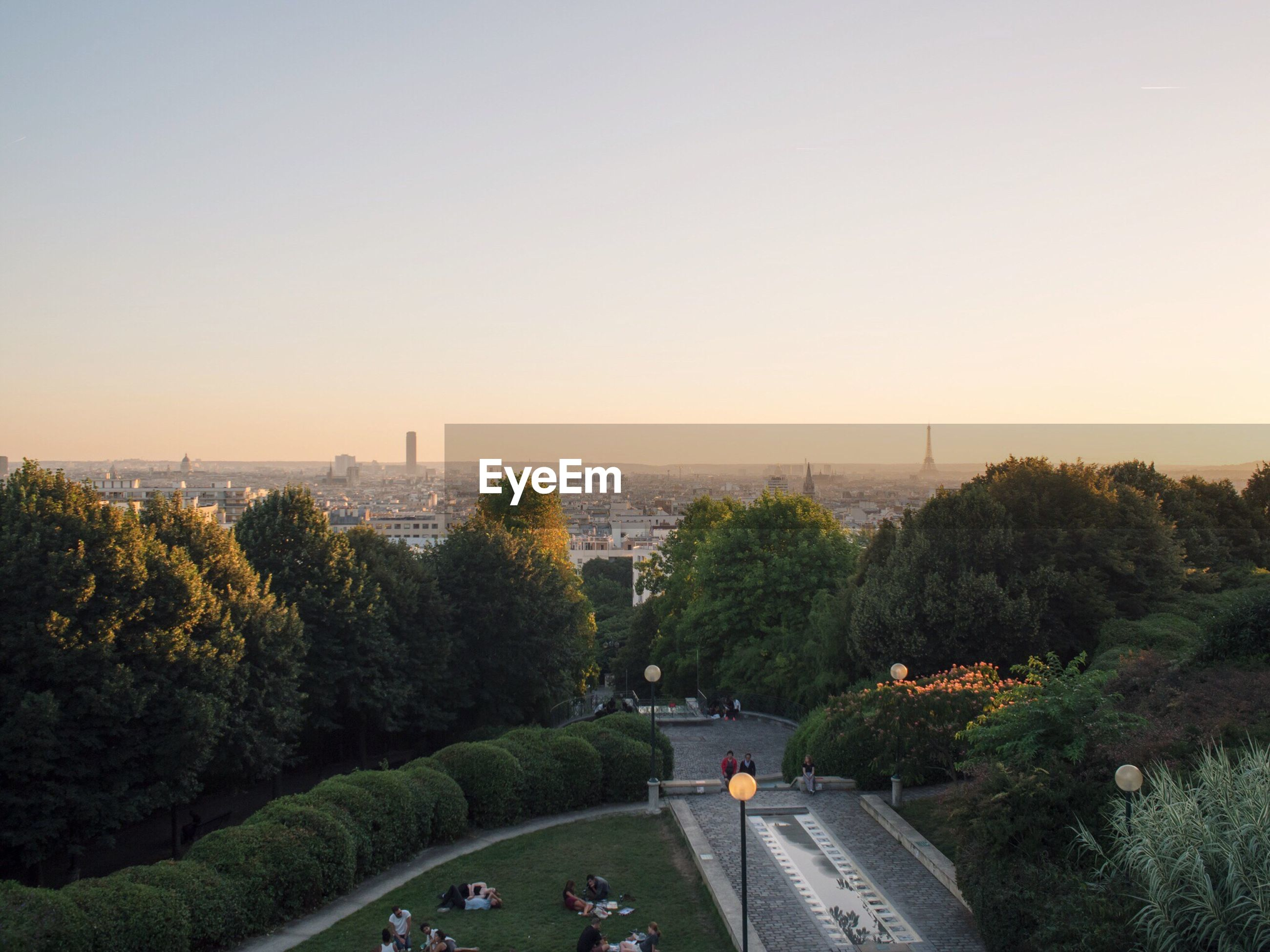 HIGH ANGLE VIEW OF TREES AGAINST CLEAR SKY DURING SUNSET