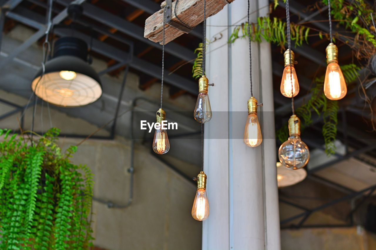 hanging, lighting equipment, in a row, light bulb, focus on foreground, no people, illuminated, low angle view, lantern, architecture, electricity, built structure, outdoors, day, close-up