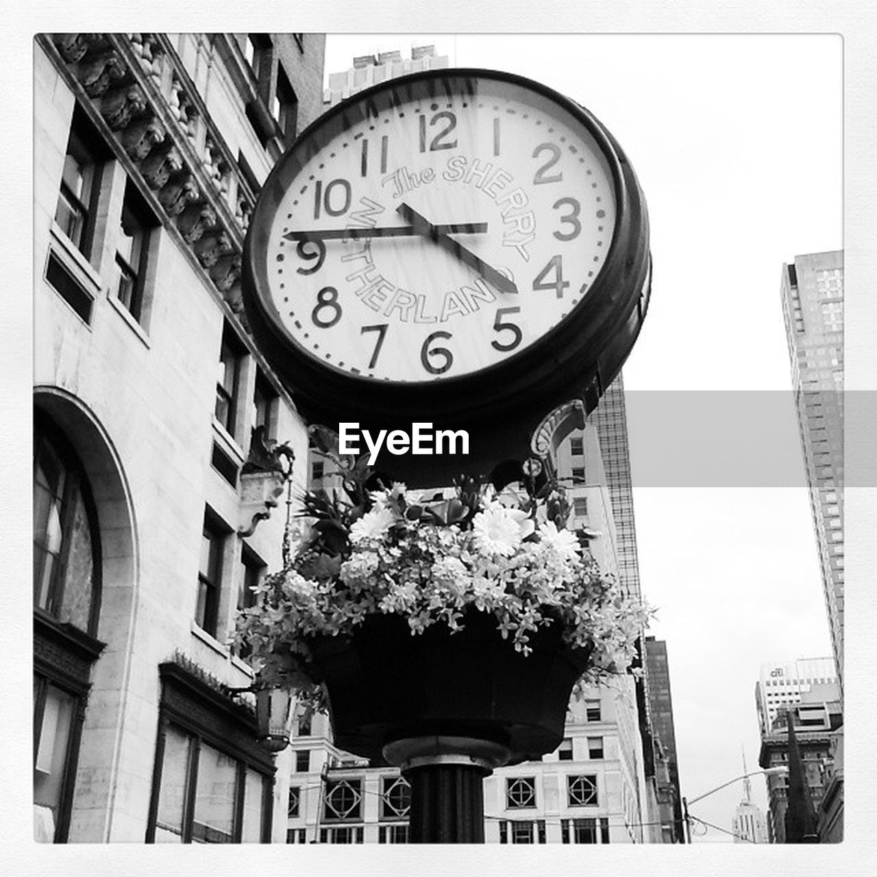 clock, building exterior, time, low angle view, architecture, built structure, outdoors, no people, day, city, clock face, minute hand, tree