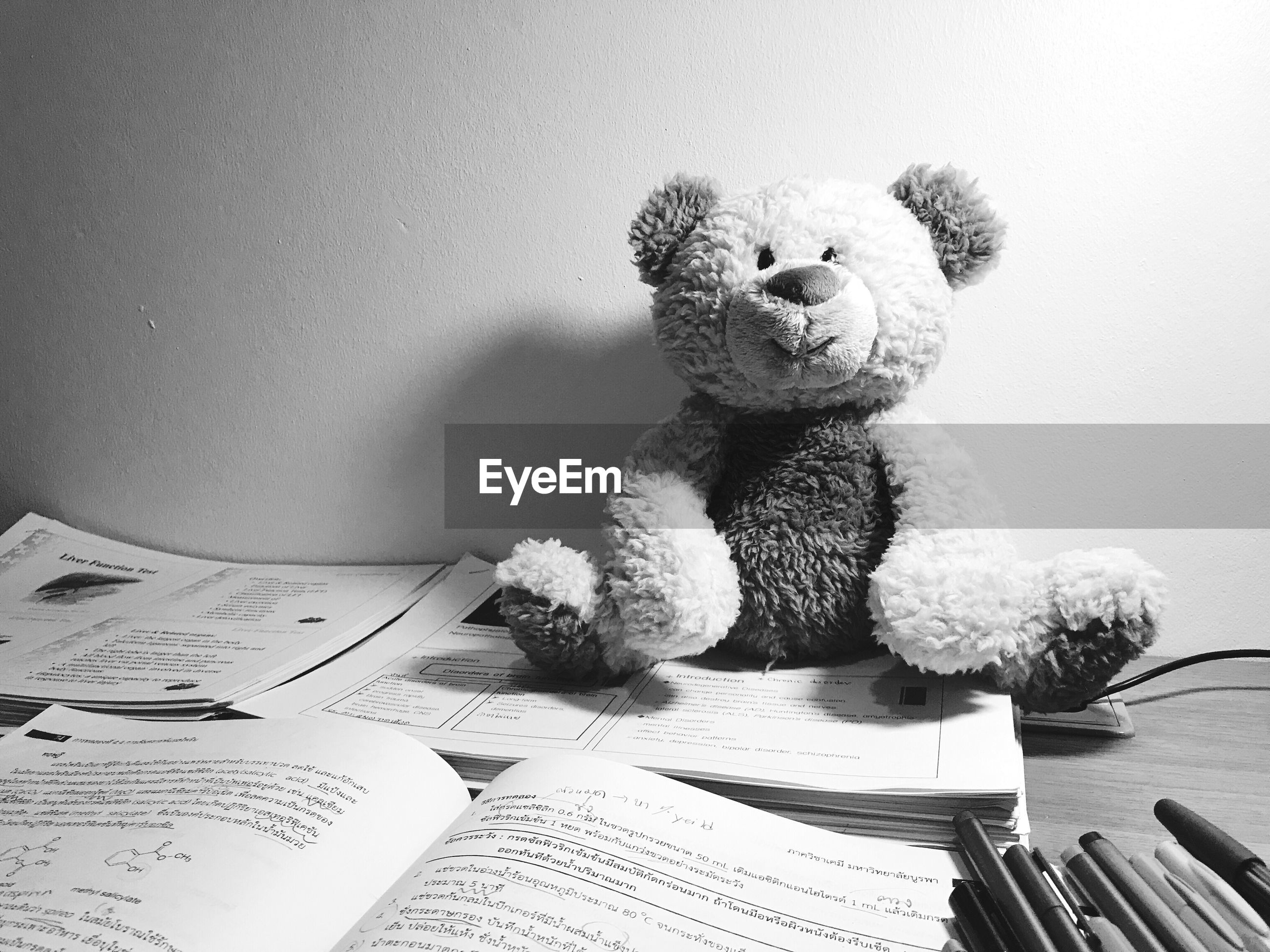 teddy bear, indoors, stuffed toy, toy, book, no people, childhood, close-up, day