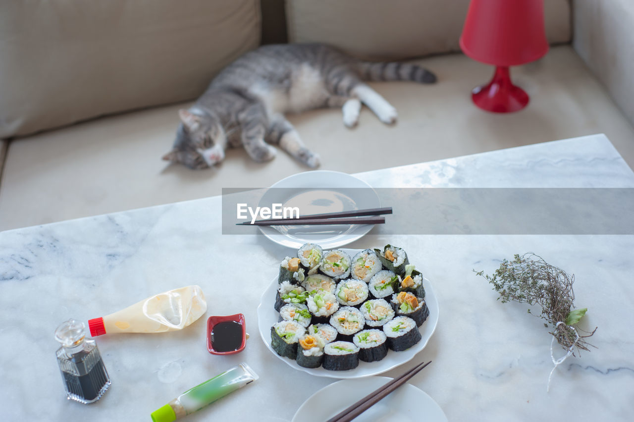 HIGH ANGLE VIEW OF CAT ON PLATE