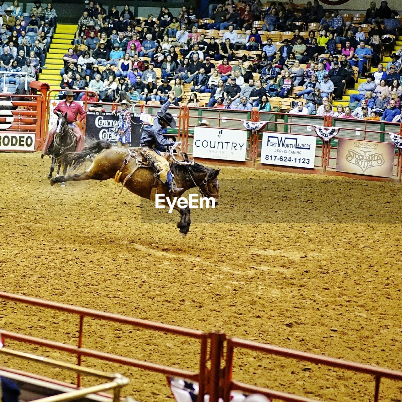 horse, domestic animals, jockey, horse racing, mammal, running, sports race, event, competition, spectator, large group of people, real people, crowd, stadium, day, men, sports track, audience, outdoors, fan - enthusiast, adult, people