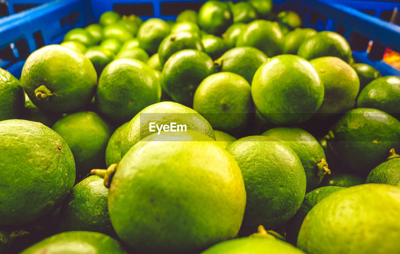 healthy eating, food and drink, food, wellbeing, fruit, freshness, green color, market, retail, large group of objects, market stall, close-up, still life, no people, abundance, heap, for sale, citrus fruit, selective focus, organic, sale, ripe, retail display, consumerism