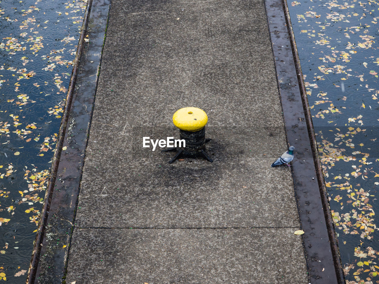High Angle View Of Yellow Bollard On Urban Footpath During Autumn