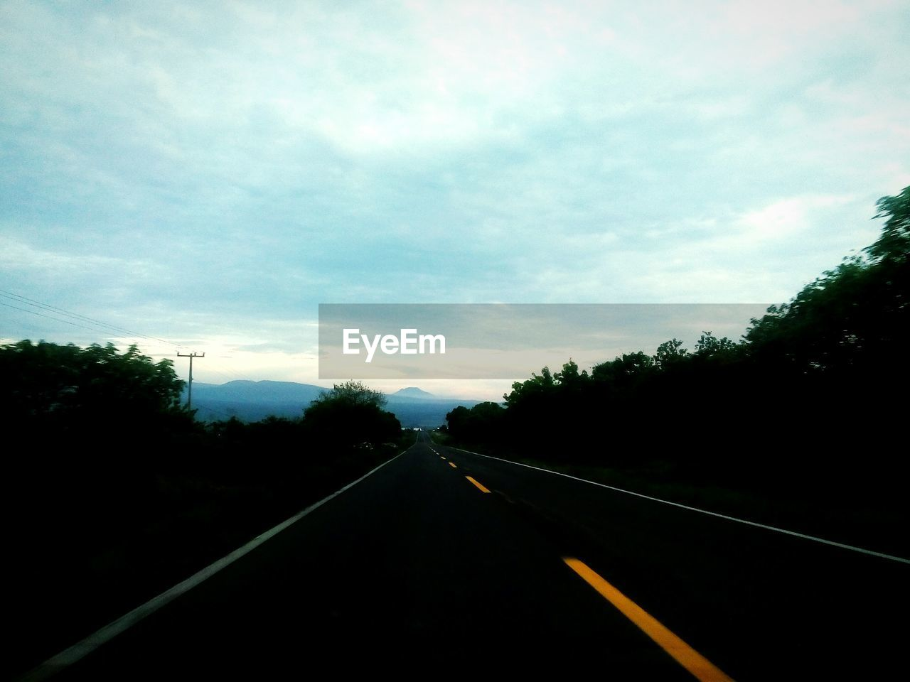 the way forward, tree, diminishing perspective, transportation, no people, road, sky, day, cloud - sky, outdoors, nature
