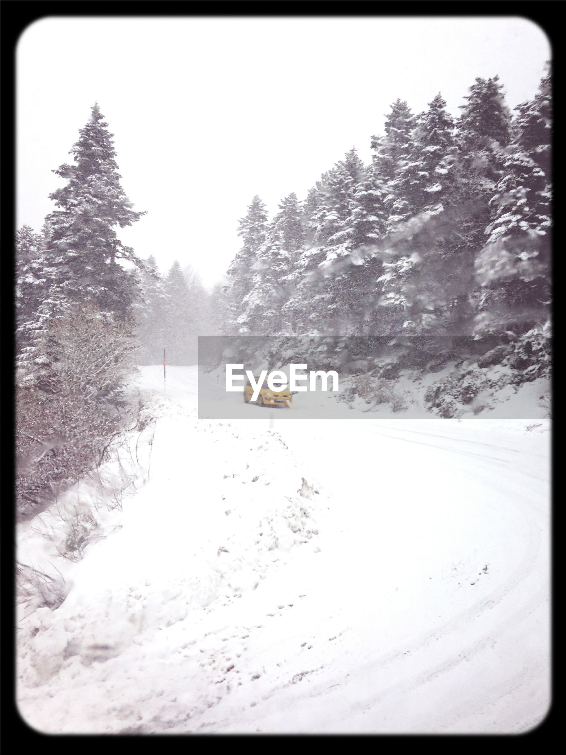 transfer print, snow, winter, cold temperature, season, tree, auto post production filter, weather, tranquility, nature, tranquil scene, transportation, covering, frozen, landscape, beauty in nature, scenics, day, clear sky, water