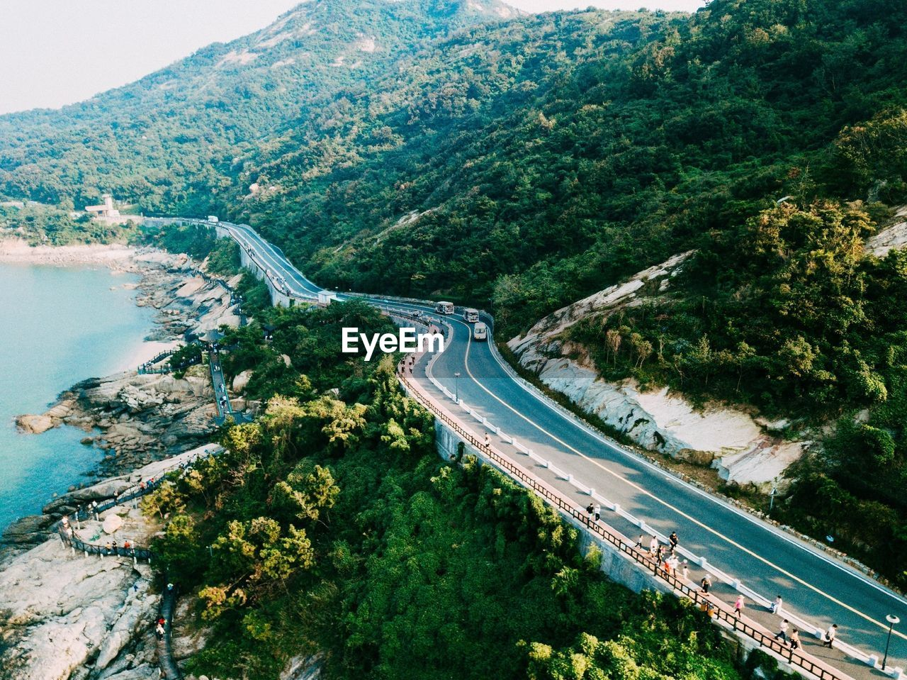 tree, road, transportation, high angle view, plant, water, nature, beauty in nature, scenics - nature, mountain, day, aerial view, no people, connection, non-urban scene, outdoors, environment, highway, growth, mountain road