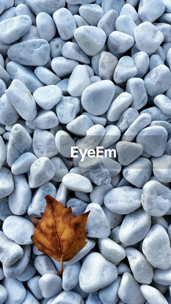 Directly Above Shot Of Dry Leaf On Pebbles Covered Beach