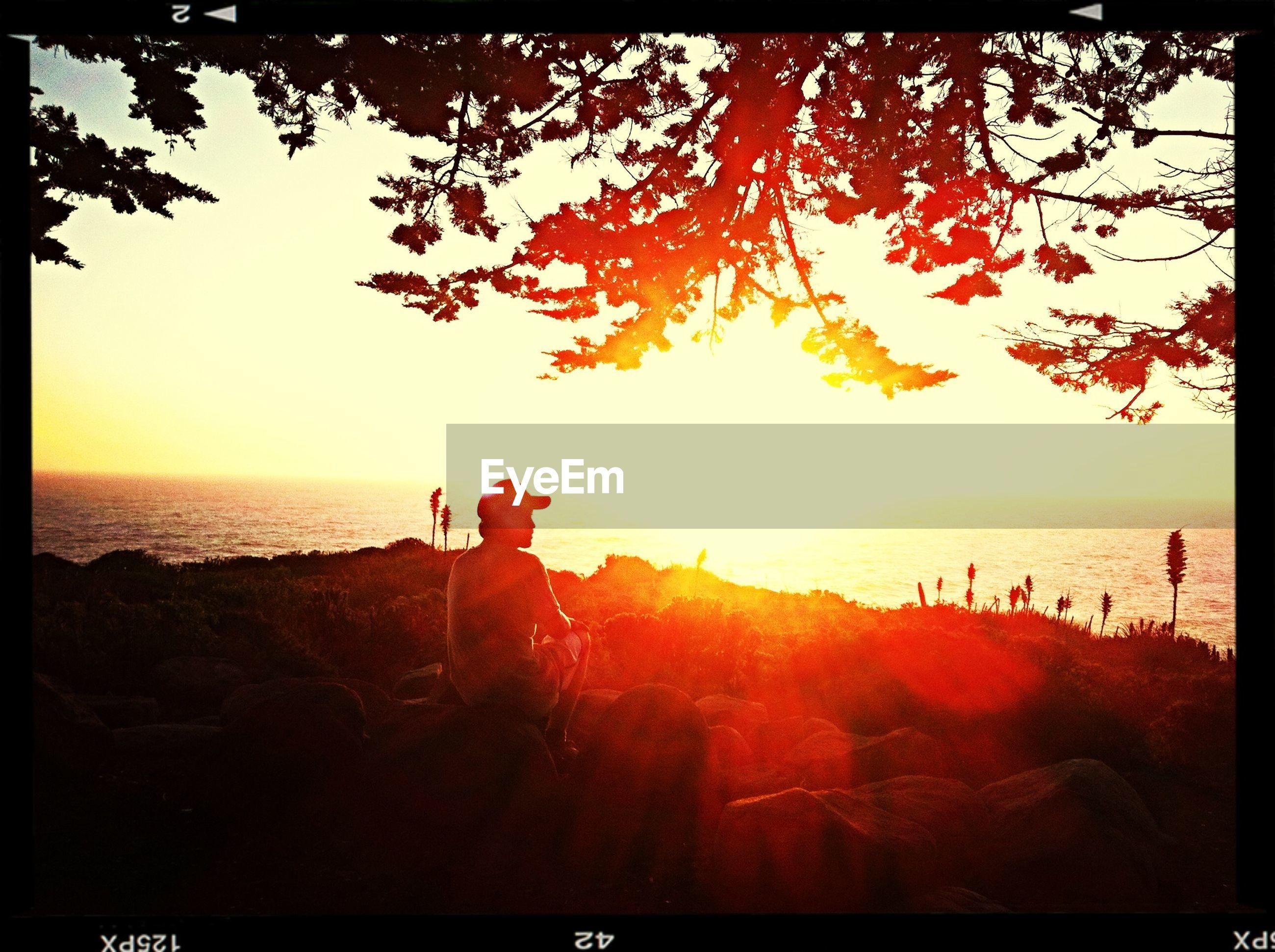 transfer print, auto post production filter, sunset, leisure activity, lifestyles, sea, horizon over water, water, silhouette, men, beach, scenics, beauty in nature, tree, sun, nature, tranquil scene, tranquility, sky