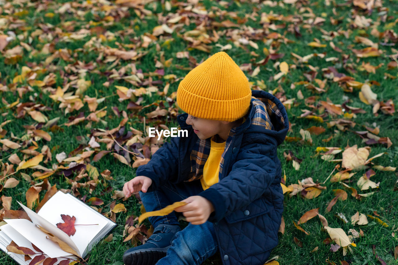 A little boy collects autumn leaves in a notebook.