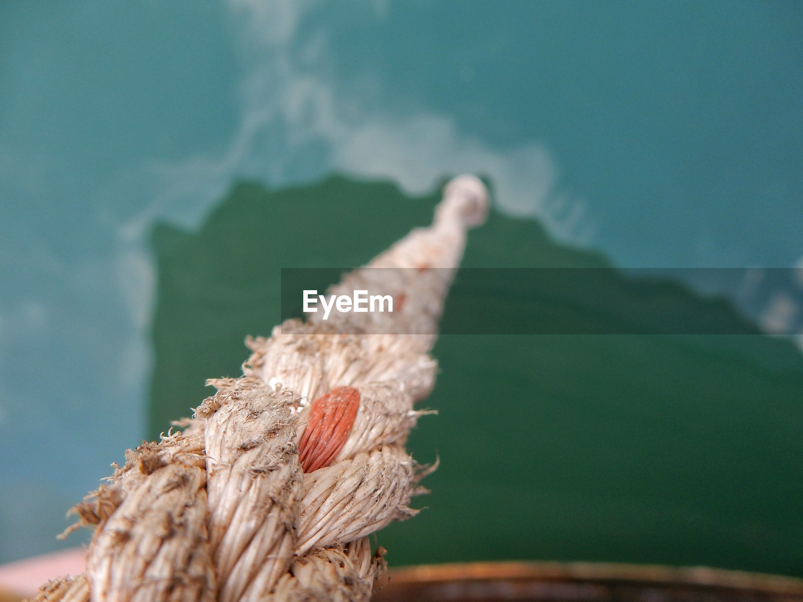 Close up of rope over sea